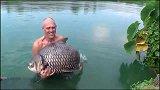 有机会一定要去湄公河钓一次巨暹罗鲤!