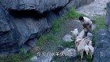 《胜利之路》郑少军借放羊之便偷练枪法