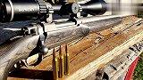 火力测试:全新鲁格M77 MK II狙击步枪