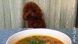 研究18年的酸辣汤,天冷每次都能喝一大碗,一般人我不告诉他