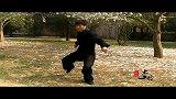 发力视频1(OK)任明明太极拳。发劲视频(OK