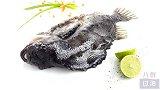 捕捞格陵兰丑鱼海参斑,分割冷冻变成女人胶原滋补品!